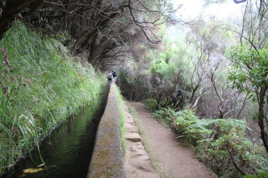 Wanderweg entlang der Levadas auf Madeira